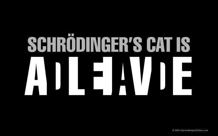 schrondinger's cat