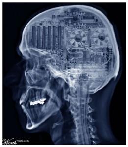 consciousness problem