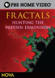 fractals hunting the hidden dimensio